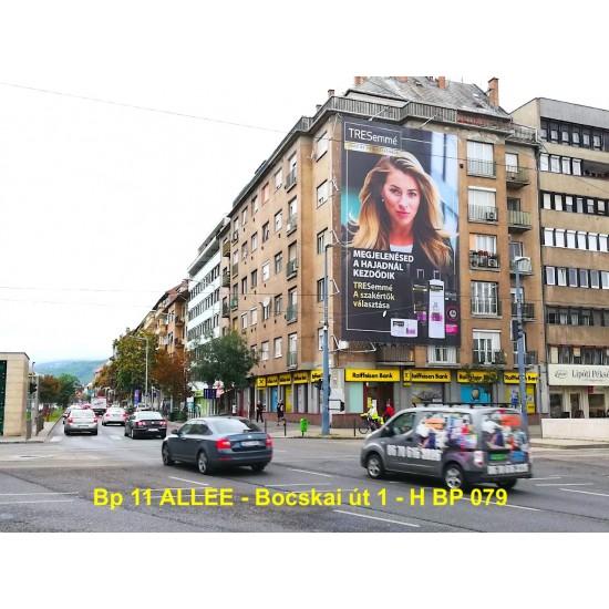 Molinó-11 –ALLEE –Bocskai út 1-2021.május 2hét